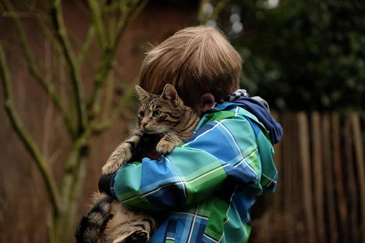 Cats help children with autism