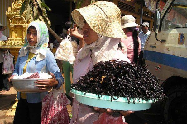 exotic foods - cambodia - fried tarantula