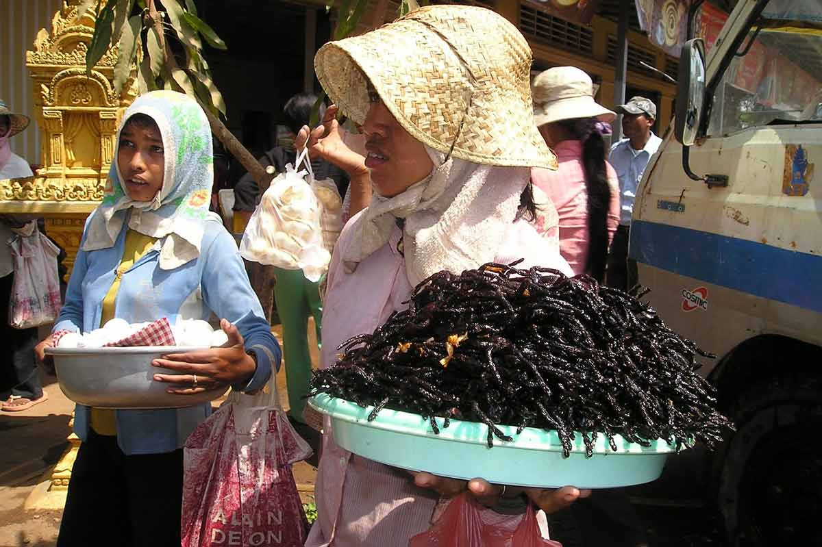exotic foods - cambodia - fried tarantula