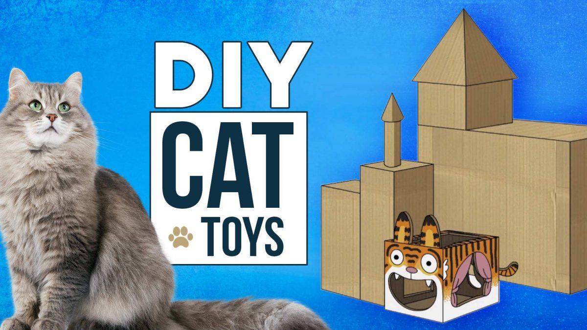 DIY-CAT-Toys1